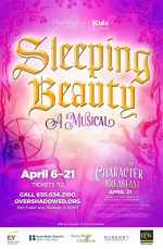 sleeping beauty poster design