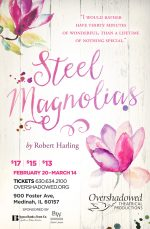 Poster design for Steel Magnolias